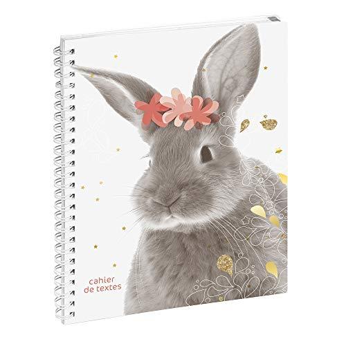Exacompta 999149E Cahier de textes 17 cm x 22 cm Funny Pets lapin fleurs